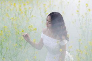 meadow-3050075_1920